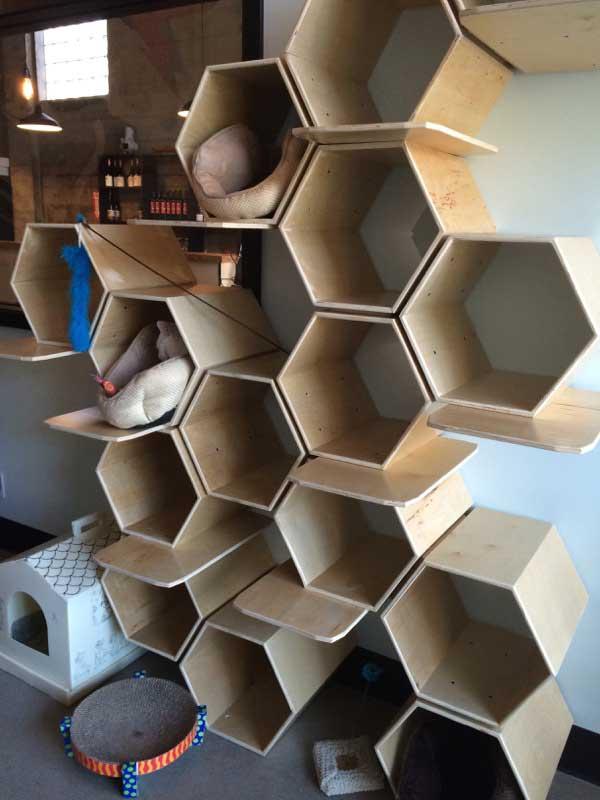 Levon Cullen built the honeycomb cat nesting structure. (Photo by Kezia Willingham)
