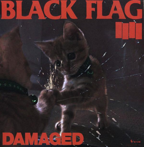 KittenCoversBlackFlag