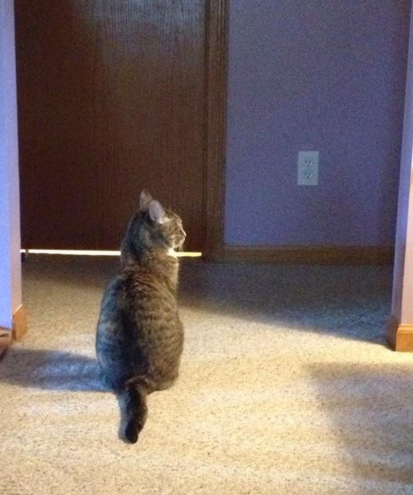 Phoebe not-so-patiently awaits Ben's bathroom routine.