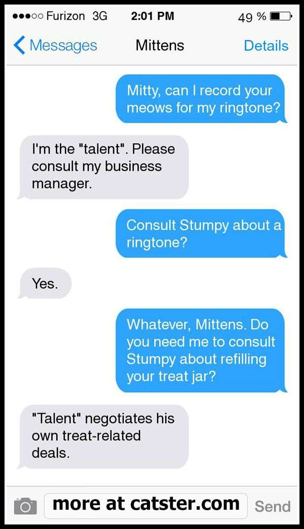 texts-from-mittens-meow-ringtone