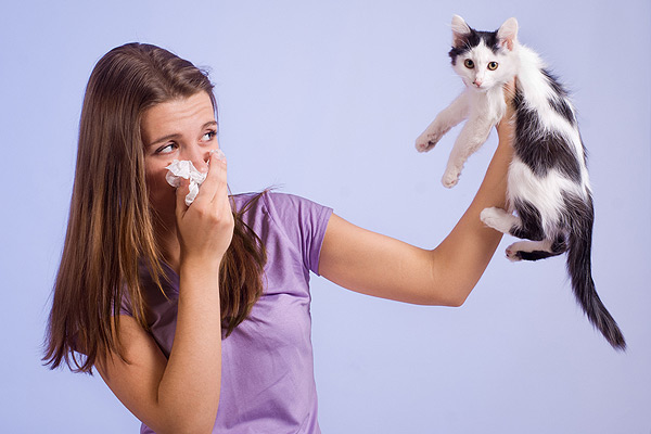 A woman blowing her nose around a black and white cat.