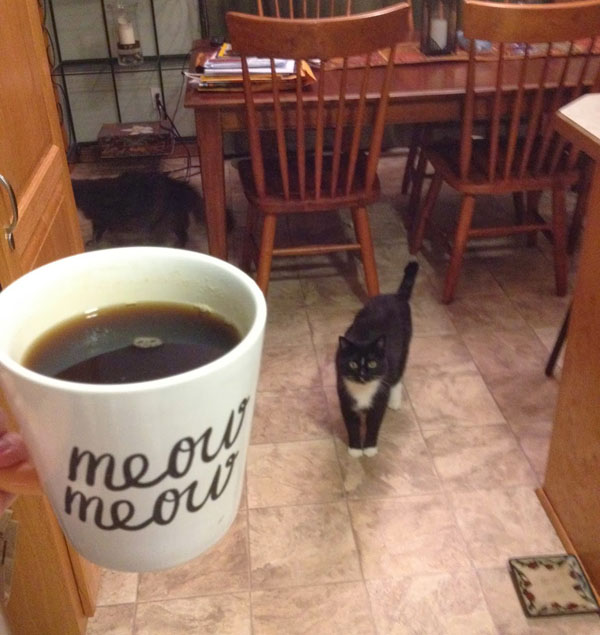 cosmo-disapproving-coffee