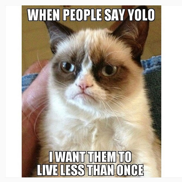 yolo meme posted by funnymemesfunnyphotos90