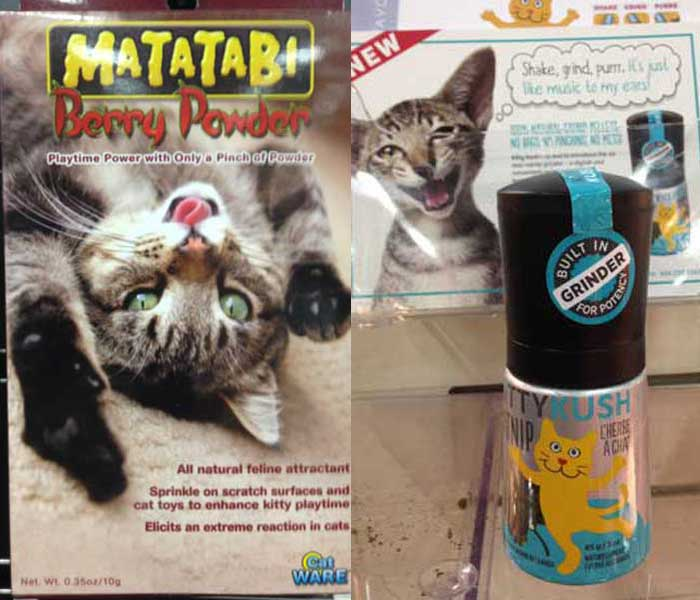 Legal highs for your kitty.