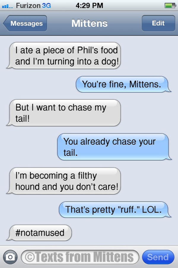 mittens-eat-phils-food