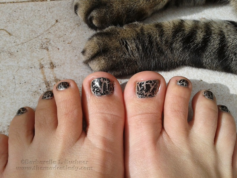 spider-tabby-nails