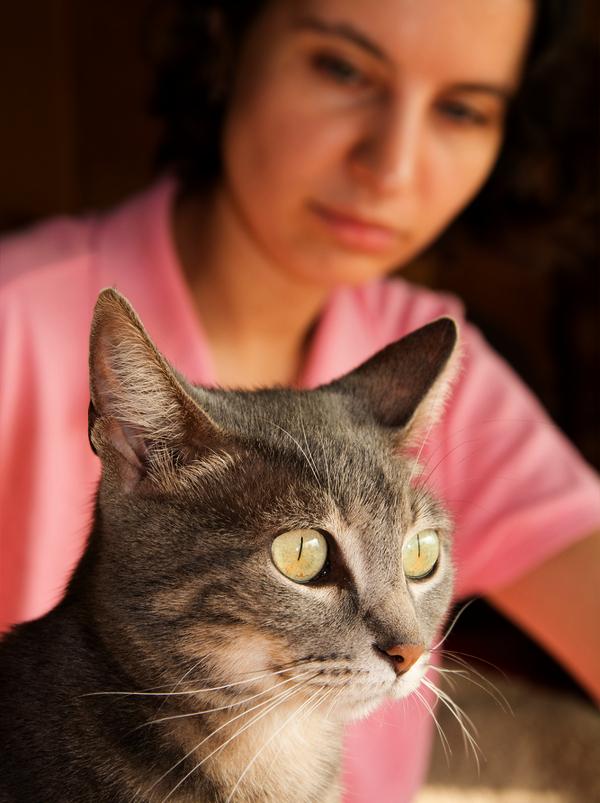 woman-looks-at-tabby-cat-211873876