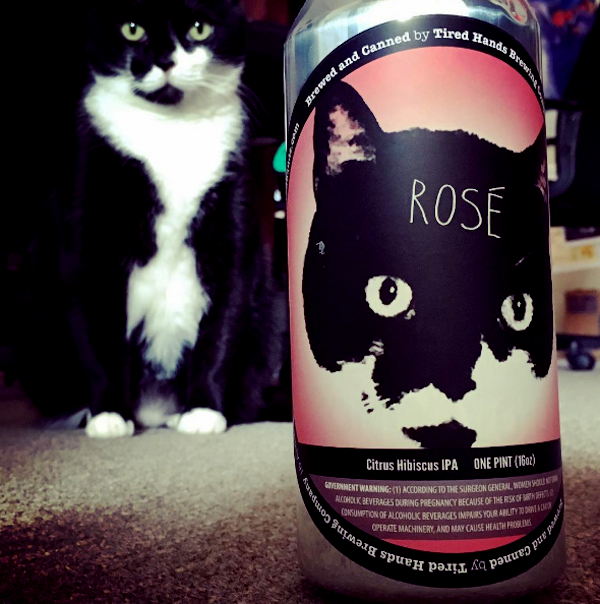 Beer-Cat-Rose