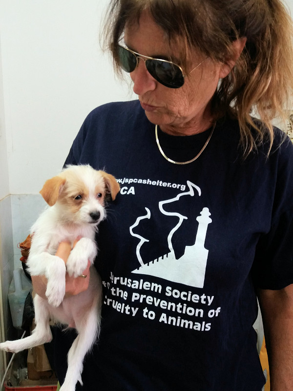 JSPCA-volunteer-puppy