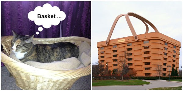 """""""So much basket, so little time."""""""