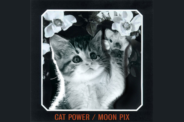cat power by alfra martini