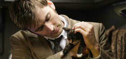 The Cats Of Doctor Who Catster
