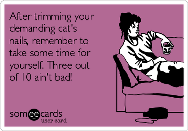 7-after-trimming-your-demanding-cats-nails-remember-to-take-some-time-for-yourself-three-out-of-10-aint-bad-5ed32