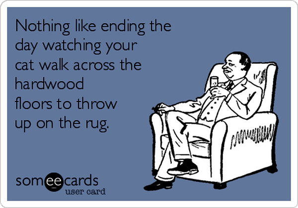 9-nothing-like-ending-the-day-watching-your-cat-walk-across-the-hardwood-floors-to-throw-up-on-the-rug-05ef1