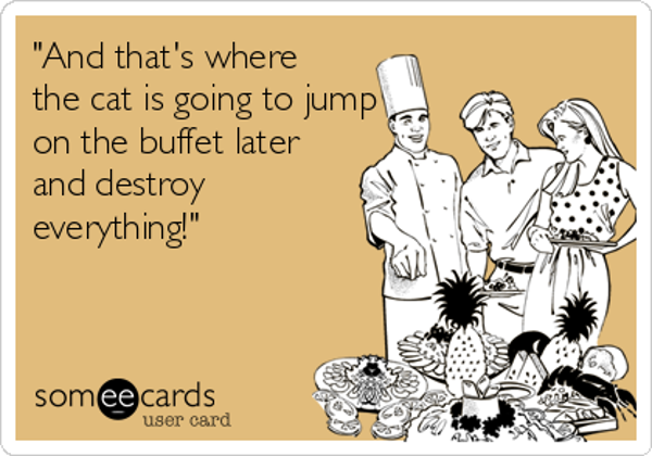 and-thats-where-the-cat-is-going-to-jump-on-the-buffet-later-and-destroy-everything-f940b