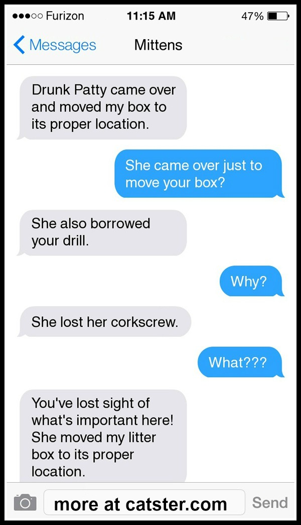 texts-from-mittens-litter-box-4