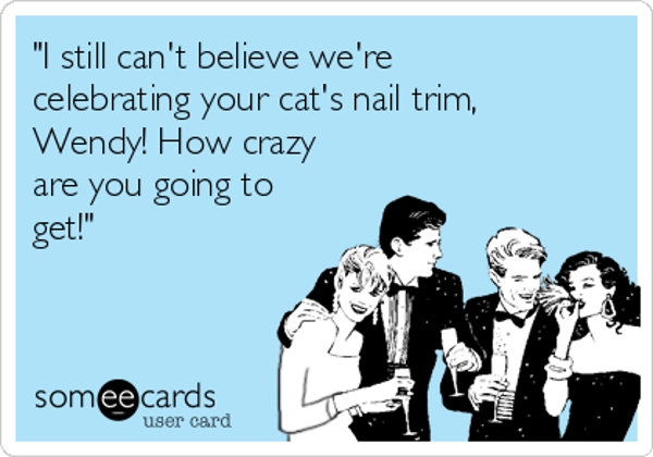 i-still-cant-believe-were-celebrating-your-cats-nail-trim-wendy-how-crazy-are-you-going-to-get--70dd0