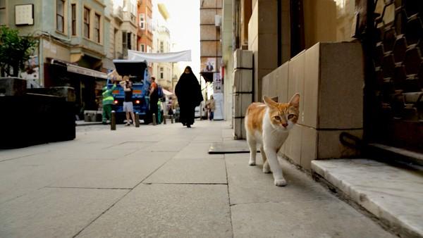 kedi-13-Yellow-street-in-KEDI