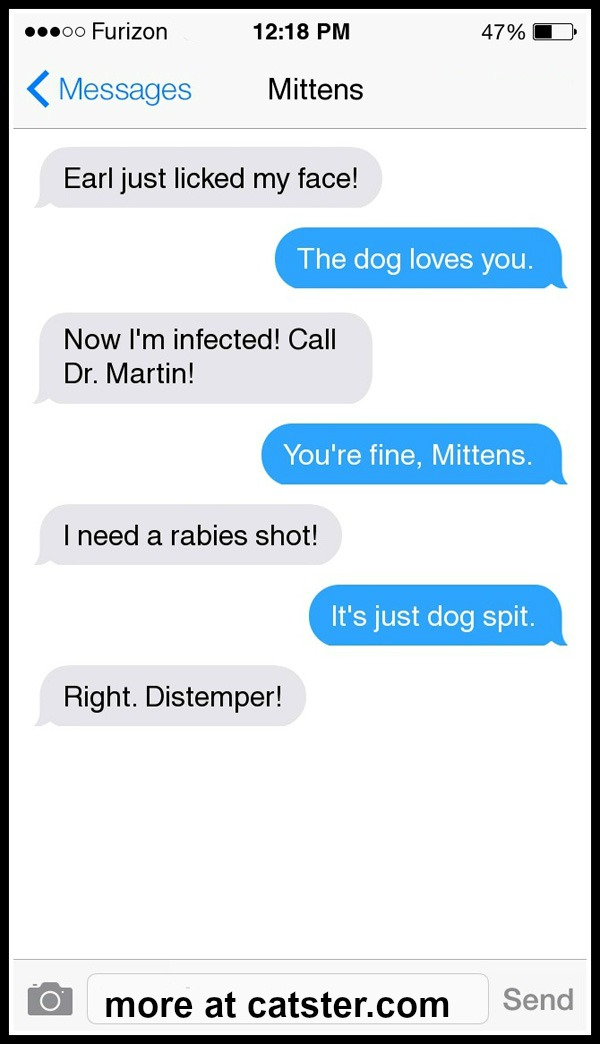 texts-from-mittens-earl-dog-rabies
