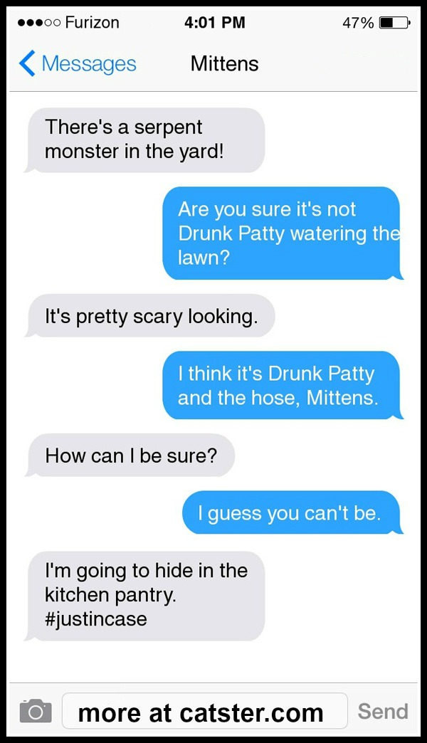 texts-from-mittens-drunk-patty-hose