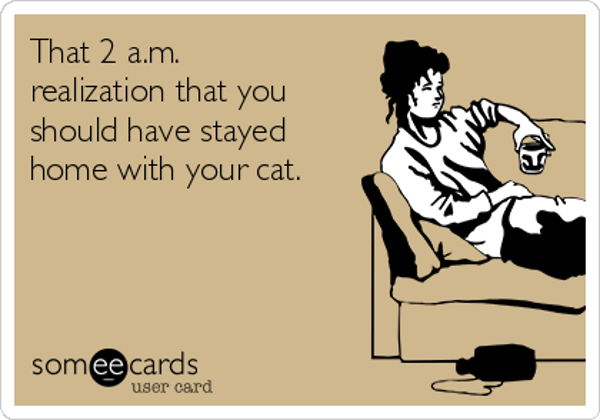 that-2-am-realization-that-you-should-have-stayed-home-with-your-cat-8d924