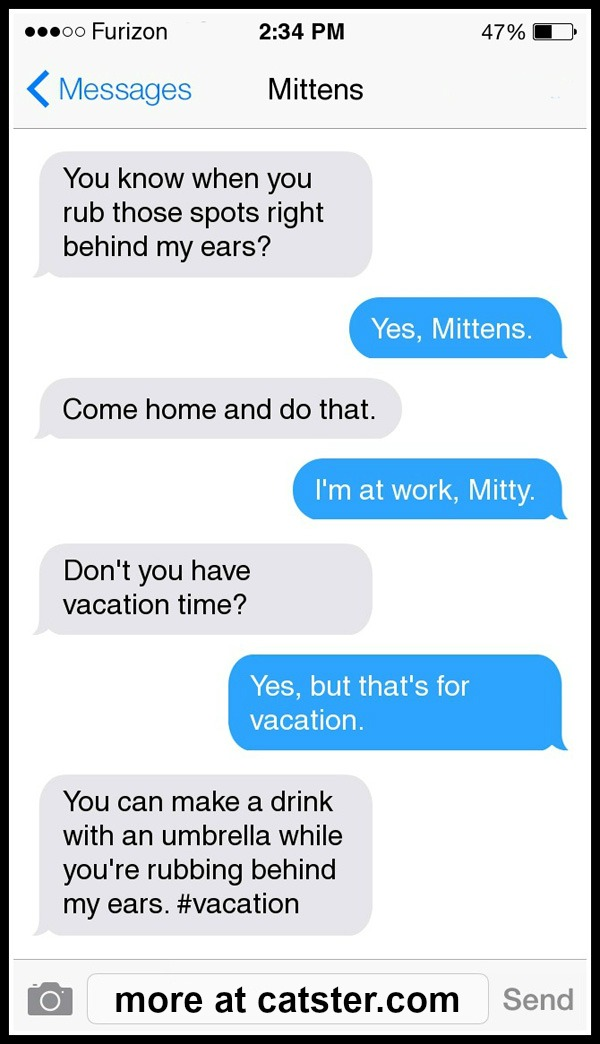 texts-from-mittens-vacation