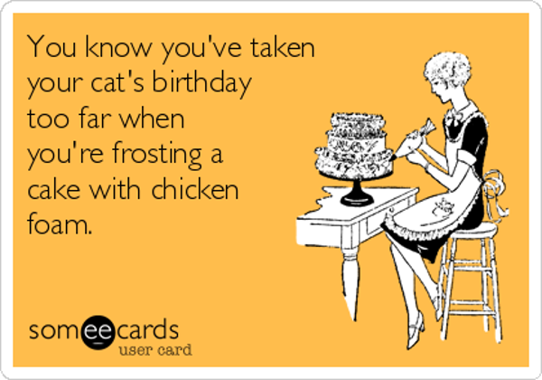 you-know-youve-taken-your-cats-birthday-too-far-when-youre-frosting-a-cake-with-chicken-foam--7bf81