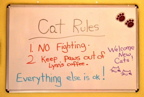 best-cat-house-pa-white-board