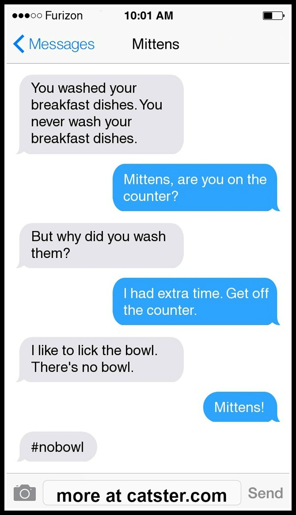 mittens-counter-1