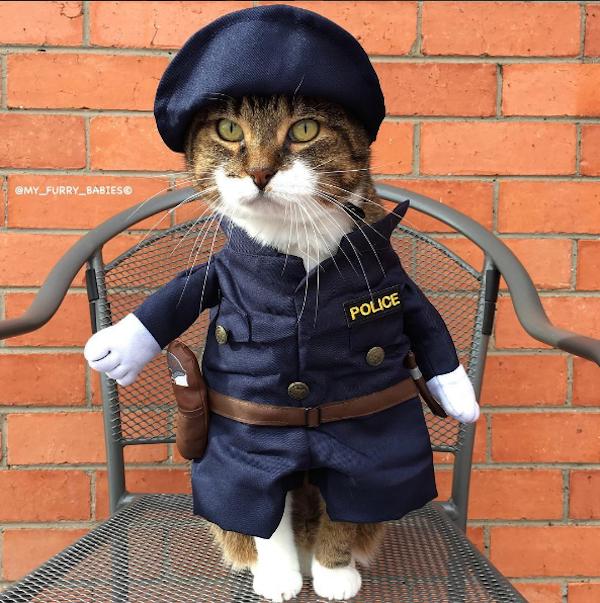 OfficerJoey