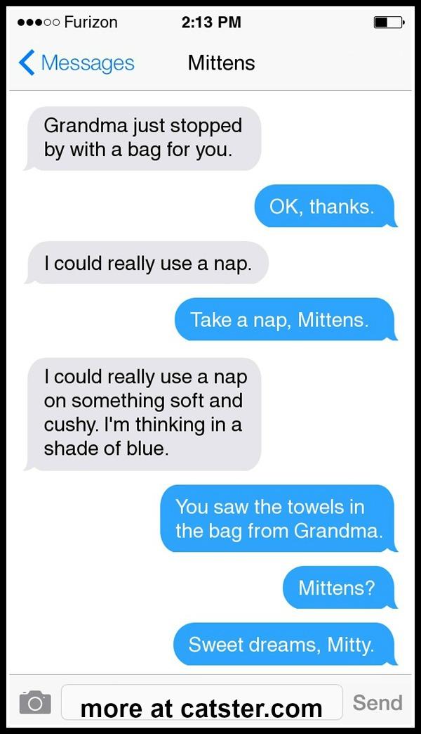 texts-from-mittens-grandma-towels