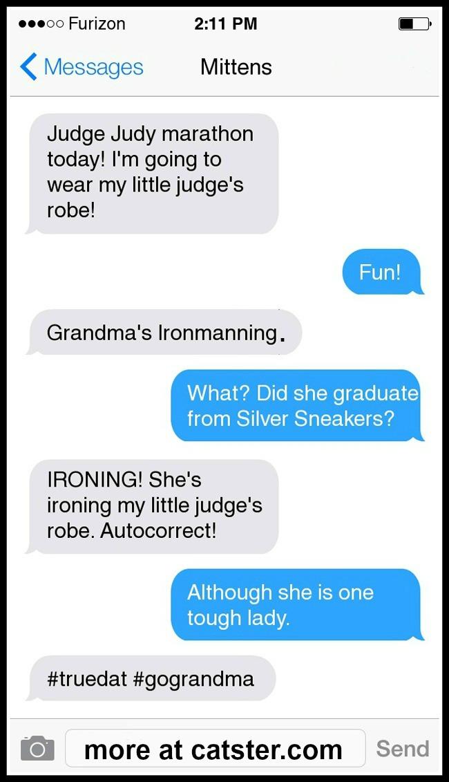mittens-judge-judy-robe-autocorrect