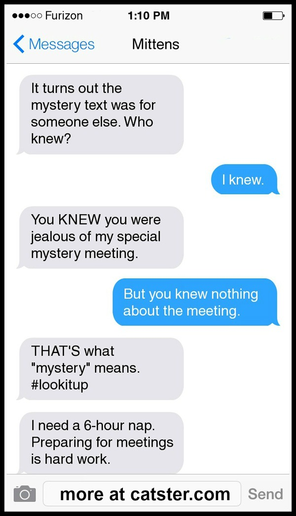 mittens-mystery-text-4