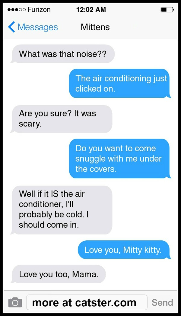 texts-from-mittens-noise-snuggle