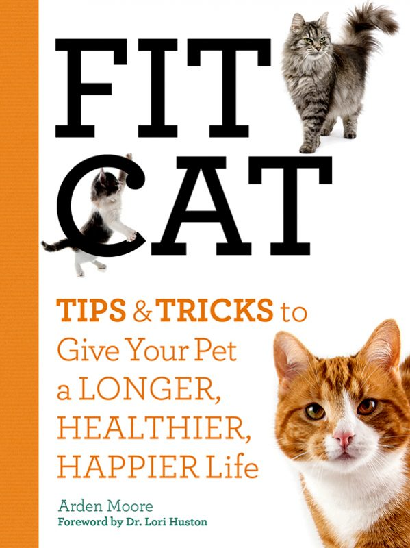 Obs-Fit-Cat-book-cover
