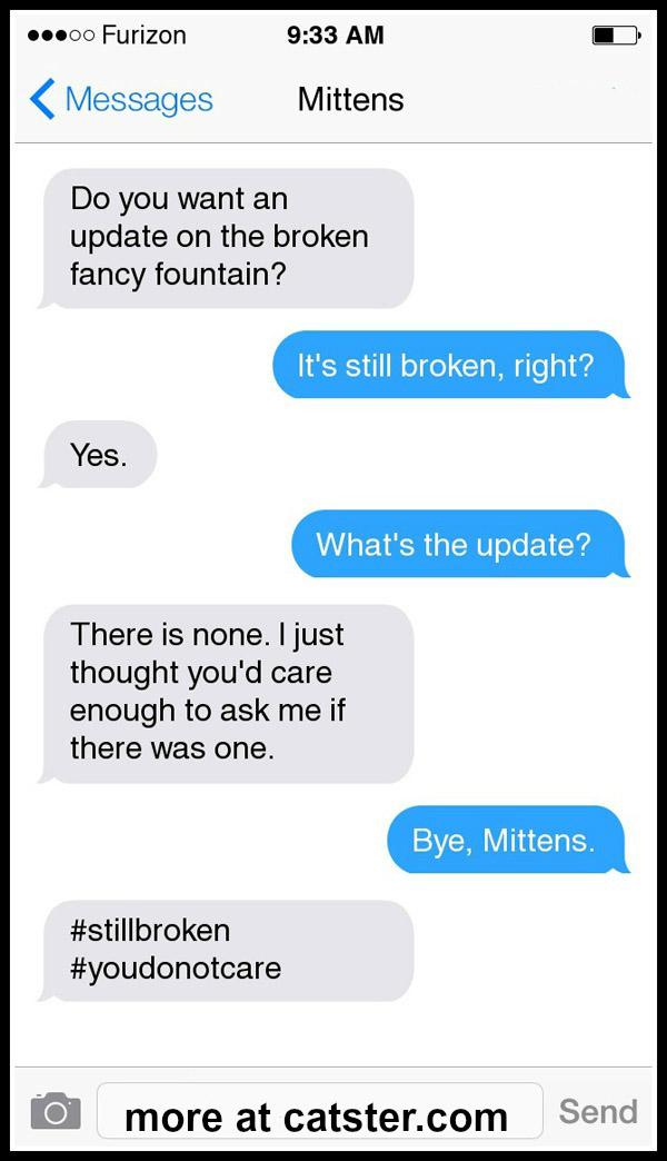 mittens-fancy-fountain-3