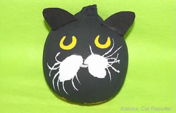 CatPumpkinsKyle1