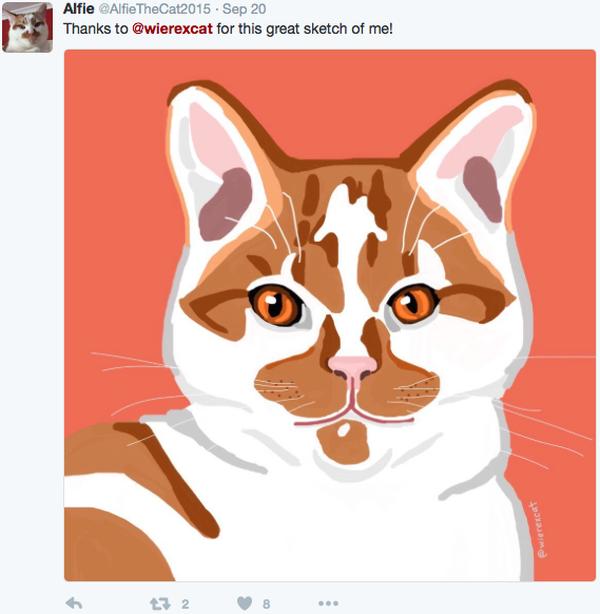 Wierex-the-Cat-Alfie