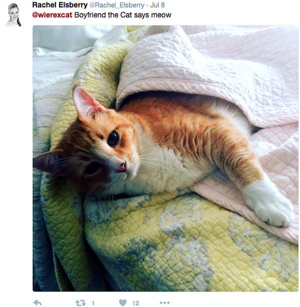Wierex-the-Cat-Boyfriend-photo