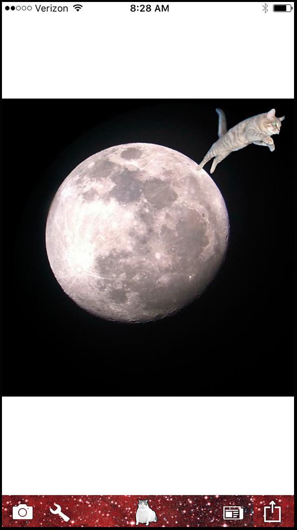 cat-tech-Cat-Paint