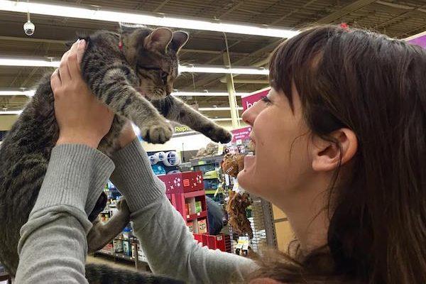 Tara's sister adopted a cat from TARA.