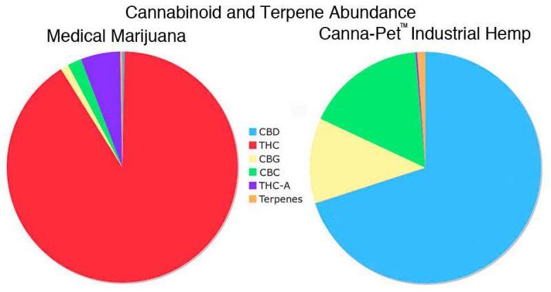 medmarijuana-v-industhemp
