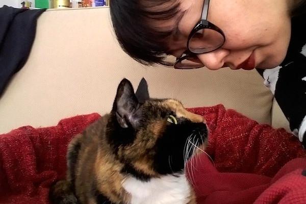 0-adopt-a-senior-cat-TN