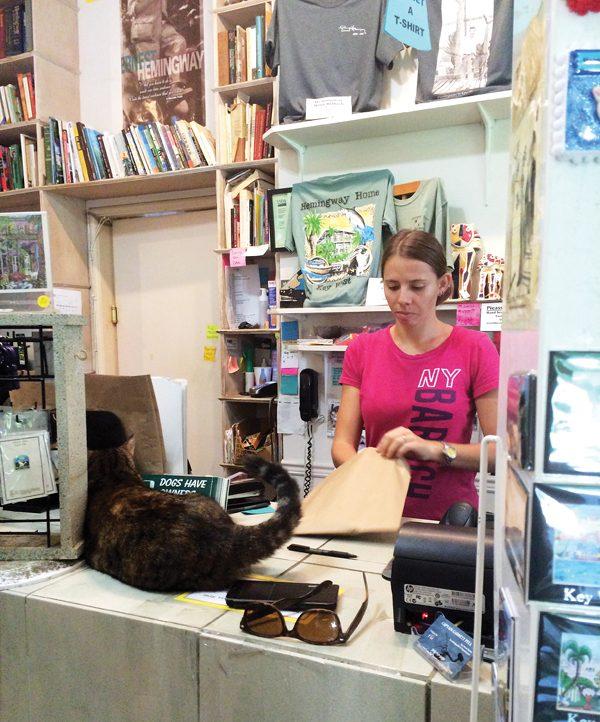cat-souvenirs-Hemingway