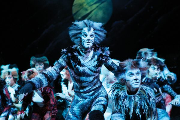 cat-souvenirs-cats-musical-13166608