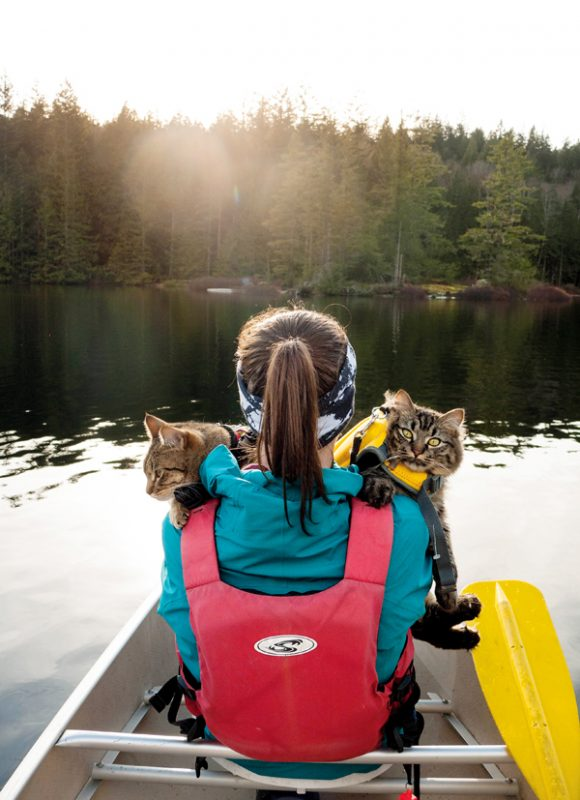 outdoor-cats-bolt-and-keel-01