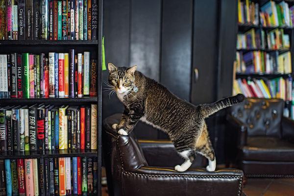 Tiny_Community_Bookstore