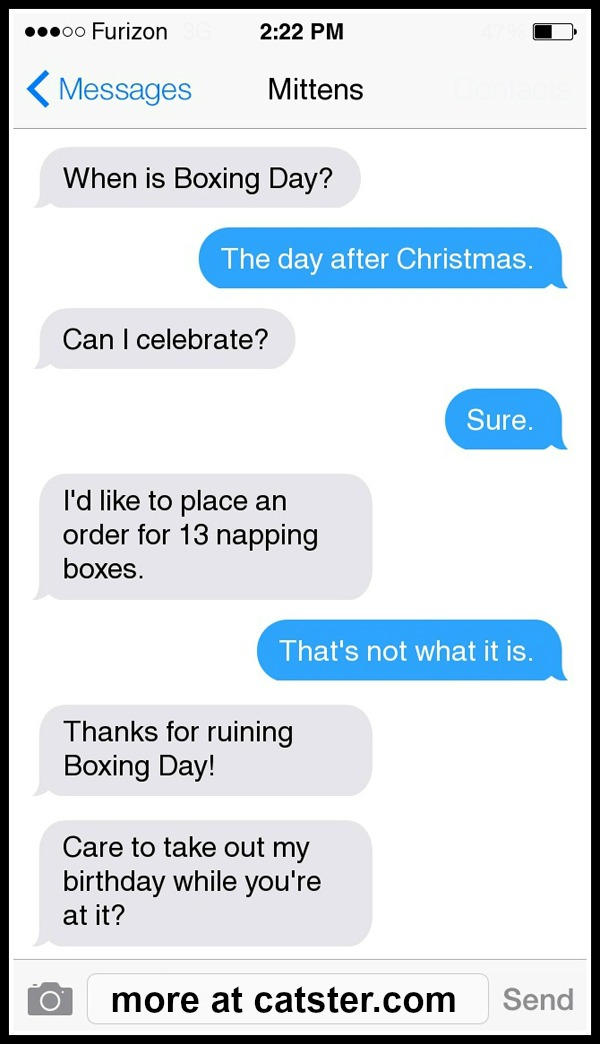 mittens-boxing-day