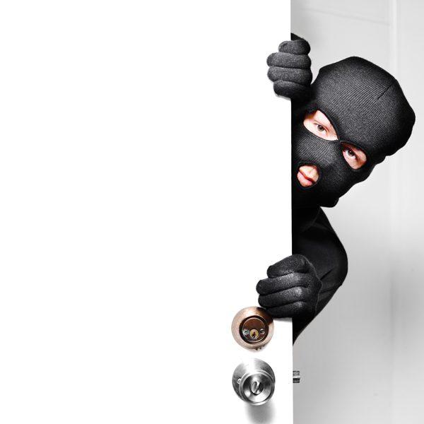 pet-theft-awareness-day-106597391