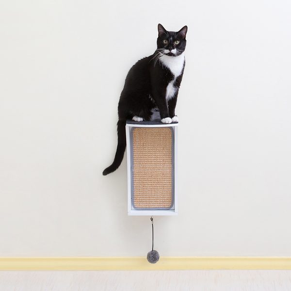 scratching-products-Catchall